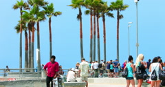 People walking near the palm trees in Venice Beach in Los Angeles, 4K, RAW Stock Footage