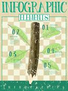 ecology style template infographic with wooden pen and leafs - stock illustration