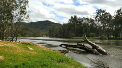 Australia Murray River with log - stock footage