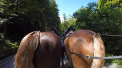 Carriage ride pulled by horses to Neuschwanstein castle Stock Footage