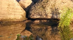 Pool water reflections on rocks Stock Footage