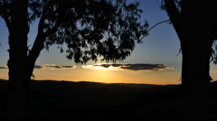 Australia Mt Bellevue sun and tree with cloud Stock Footage