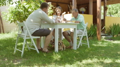 People have fun at the cottage in the garden. Stock Footage
