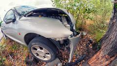Car crash against a tree Kuvituskuvat