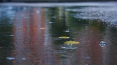 Rainy day in city streets, water drops, puddles, slow motion, selective focus. Stock Footage