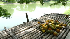 Muskmelon on bamboo pier at the waterside of the pond Stock Footage