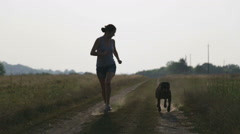 Young woman with dog in the nature. Girl walking a terrier in a field. Stock Footage
