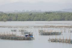 The coop for feeding fish in east of Thailand sea. Stock Photos