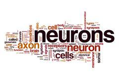 Neurons word cloud concept Stock Illustration