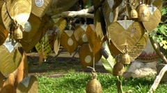 Golden Offering Temple Leaves, Moving in wind Stock Footage