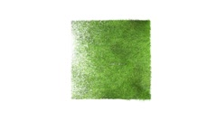Square green grass label grow 3d animation Stock Footage