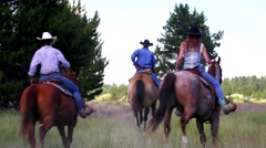 People ride horses through green field Stock Footage