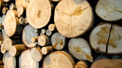 Stack of logs/chopped trees Stock Footage