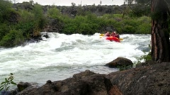 Family whitewater rafting by woods in Oregon 2 Stock Footage