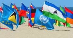 International flags blowing in the wind in Venice Beach in Los Angeles 4K RAW Stock Footage