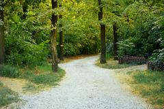 The access road from gravel in the trees on a sunny summer day Stock Photos