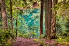 HDR photo of an ultra clear spring lake in a Nordic forest Stock Photos