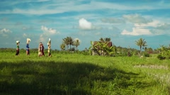 Small balinese family procession between rice fields Stock Footage