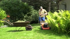 man shake grass out from  trimmer in old rural wheelbarrow. 4K - stock footage