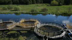 Trout farm top view Stock Footage