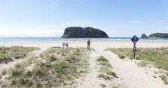 Aerial of whangamata beach clark island, Coromandel, New Zealand Stock Footage