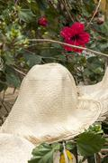 Special Display Of Straw Hats Stock Photos