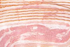 Background made of sliced ham bacon texture in full length - stock photo
