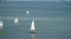 Several sailboats floating in the sea Stock Footage