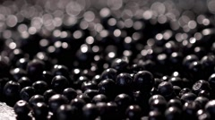 Bluberries background under pouring water Stock Footage