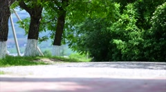 Dirt road in green meadow and trees on sky background Stock Footage