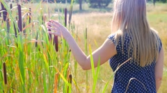 Female walking beside tall grass and touching with her hand bulrush Stock Footage