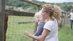 4K Families at community farm, mother & daughter petting cow through fence Stock Footage