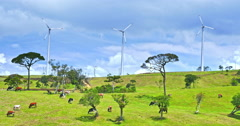 Clean energy wind power generator turbines on summer pasture with cows grazing Stock Footage