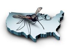 Zika Virus In The United States - stock illustration