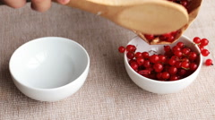 Putting red currant in white porcelain bowls Stock Footage