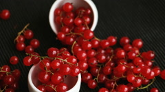 Red currant (ribes rubrum) in small white bowls Stock Footage