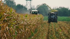 Forage , Harvesting Corn for Silage Stock Footage
