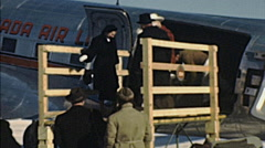 USA 1947: cowboys leaving the aircraft Stock Footage