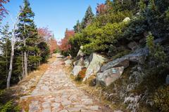 Stone Path in Autumn Mountains Stock Photos