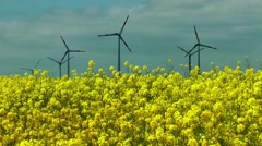 Canola field with wind turbines Stock Footage