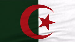 National flag of Algeria flying on the wind Stock Footage