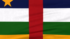 National flag of Central Africa flying on the wind Stock Footage