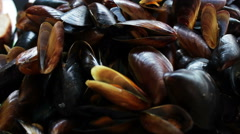 Seafood Mussels on a Plate in a Restaurant Stock Footage