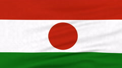 National flag of Niger flying on the wind Stock Footage