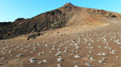 Grey matplant and cinder cone bartolome in the galapagos Stock Footage