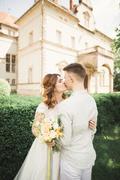 Gorgeous romantic gentle stylish beautiful caucasian bride on the background Stock Photos