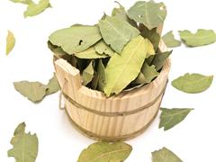 Sauna Vat and Bay Leaves Stock Photos