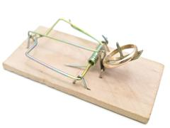 Mousetrap with Golden Ring Stock Photos
