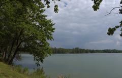 South Bohemia pond Nadeje Stock Photos