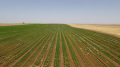 Irrigation system in the desert of Israel - stock footage